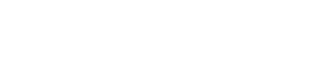 Project Access NOW Logo White